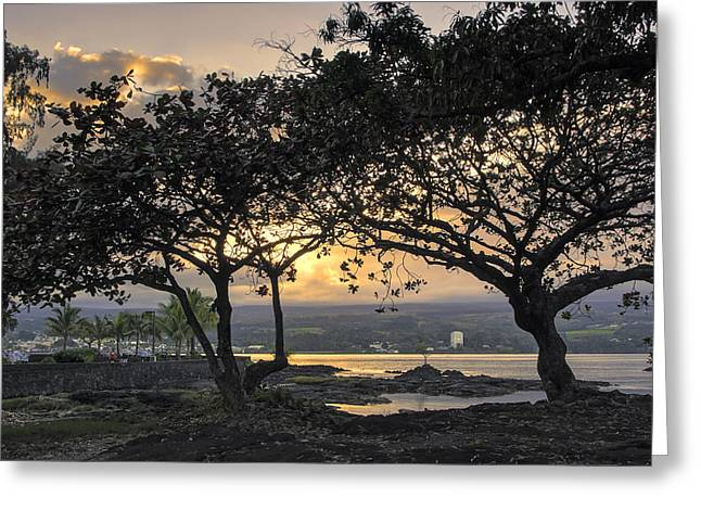 Hilo Greeting Cards - Hawaiian Nights Greeting Card by Daniel Hagerman