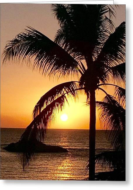 Ko Olina Lagoon Greeting Cards - Hawaiian Palm at sunset 2 Greeting Card by Gary Lysaght