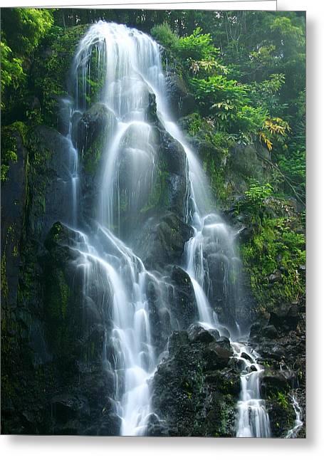 ; Maui Greeting Cards - Hawaiian Waterfall Greeting Card by James Roemmling