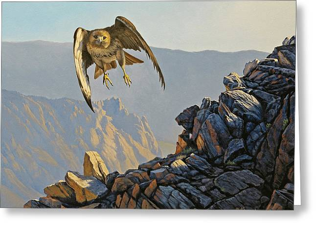 Hawk Bird Greeting Cards - Hawk Above Beartooth Pass Greeting Card by Paul Krapf