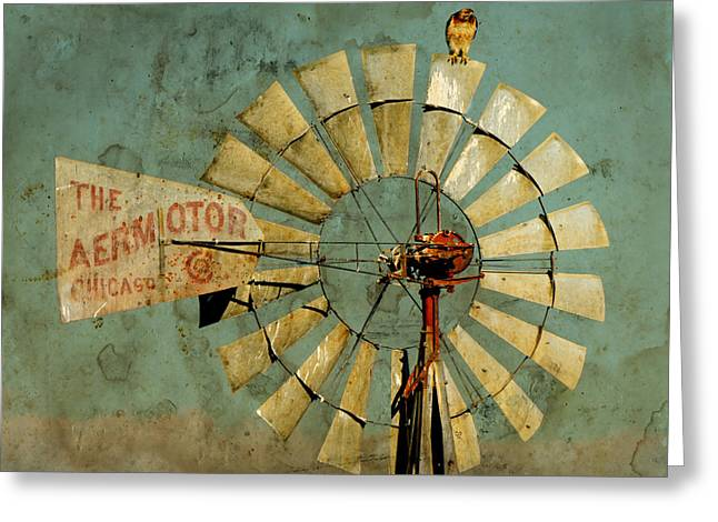 Aermotor Greeting Cards - Aermotor and Red-tail Greeting Card by Daniel Lee Brown