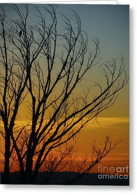Sunset Prints Greeting Cards - The Lonely Wait Greeting Card by Jennifer Ramirez