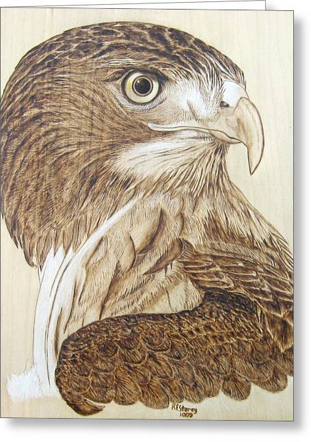 Rogers Pyrography Greeting Cards - Hawk Watch Greeting Card by Roger Storey