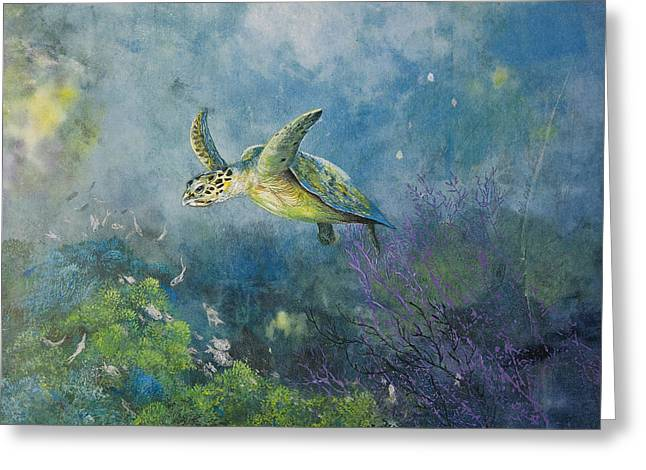 Nancy Gorr Greeting Cards - Hawkbill Turtle Feeding On Sponges Greeting Card by Nancy Gorr