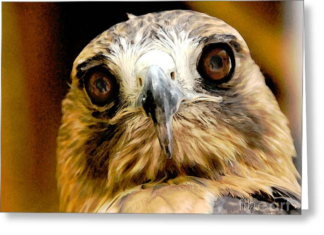 Red Tail Hawk Digital Art Greeting Cards - HawkEye Greeting Card by Lois Bryan