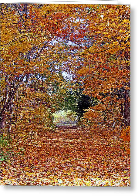 Kay Novy Greeting Cards - Hawthorn Hollow Greeting Card by Kay Novy