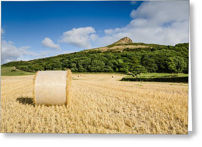 Hay Bales Greeting Cards - Hay Bale at Roseberry Topping Greeting Card by David Head
