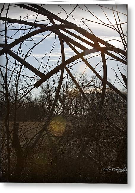 Tennessee Hay Bales Greeting Cards - Hay Bale Ring Greeting Card by Picd by T Photography