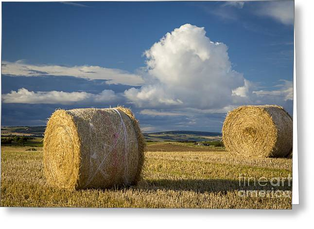Bale Greeting Cards - Hay Bales - Scotland Greeting Card by Brian Jannsen