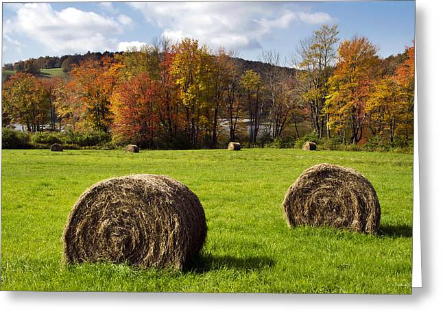 Hay Bales And Fall Colors Greeting Card by Christina Rollo