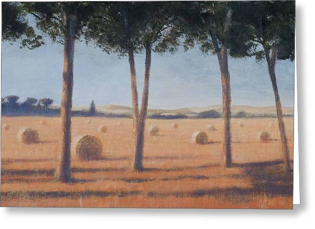 Hay Bale Greeting Cards - Hay Bales And Pines, Pienza, 2012 Acrylic On Canvas Greeting Card by Lincoln Seligman