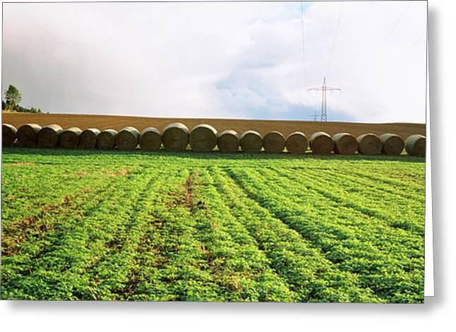 Powerline Greeting Cards - Hay Bales In A Farm Land, Germany Greeting Card by Panoramic Images