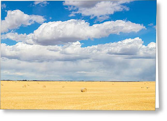 Hay Bales Greeting Cards - Hay Bales In A Field, Alberta, Canada Greeting Card by Panoramic Images