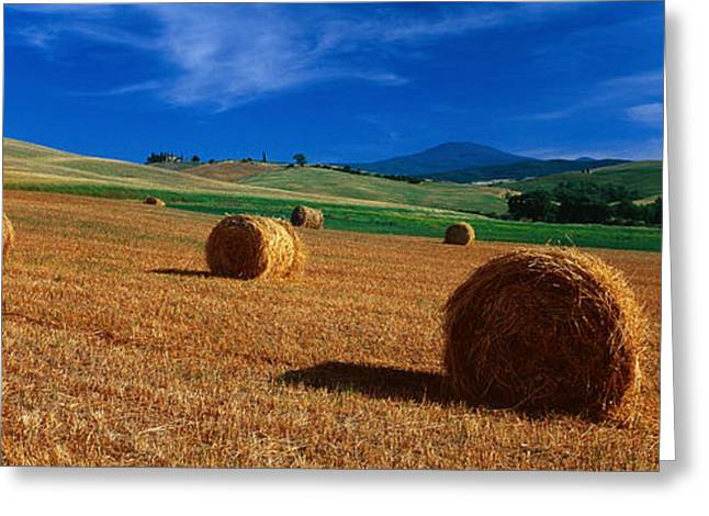 Bale Greeting Cards - Hay Bales In A Field, Val Dorcia, Siena Greeting Card by Panoramic Images
