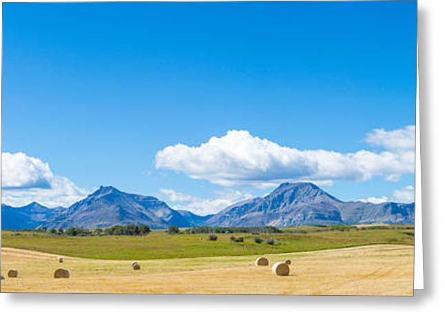 Hay Bales Greeting Cards - Hay Bales In A Field With Canadian Greeting Card by Panoramic Images