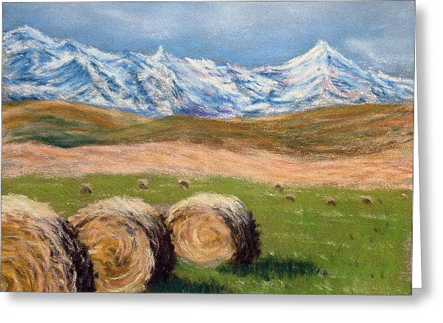 Bale Pastels Greeting Cards - Hay Bales in Alberta Greeting Card by Fiona Graham