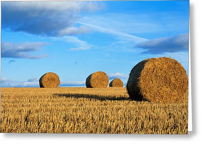 Hay Bales Greeting Cards - Hay Bales, Scotland, United Kingdom Greeting Card by Panoramic Images