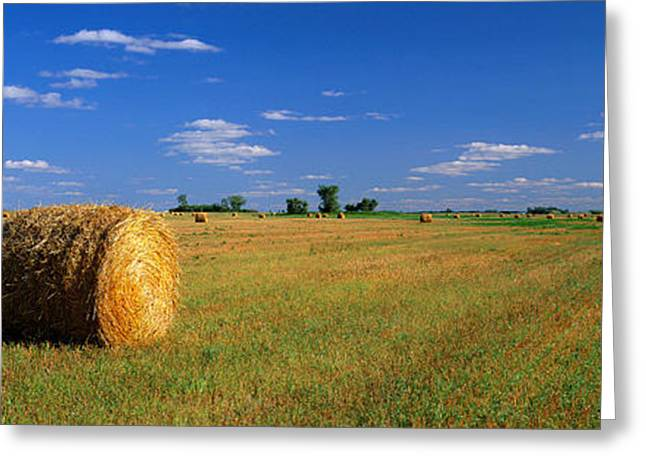 Bale Greeting Cards - Hay Bales, South Dakota, Usa Greeting Card by Panoramic Images