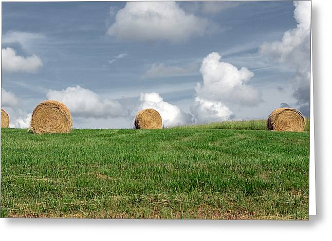 Tennessee Hay Bales Greeting Cards - Hay Bales Greeting Card by Steven  Michael