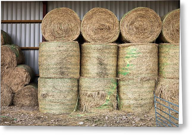 Bale Greeting Cards - Hay bales Greeting Card by Tom Gowanlock