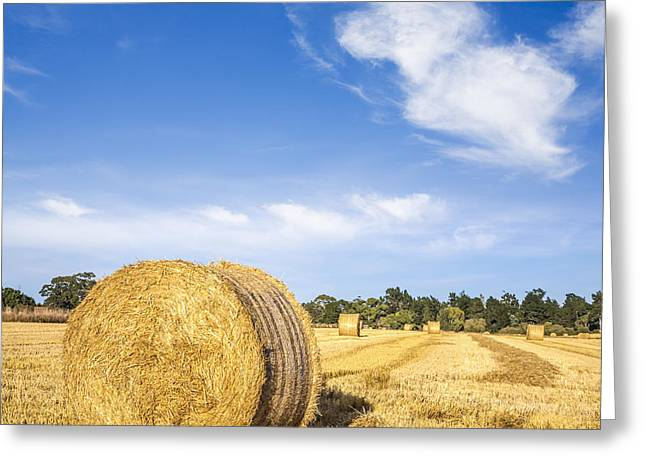 Hay Bales Photographs Greeting Cards - Hay Bales Under Deep Blue Summer Sky Greeting Card by Colin and Linda McKie