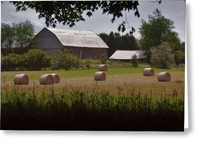 Sweltering Greeting Cards - Hay - Barn - Summer Greeting Card by Henry Kowalski
