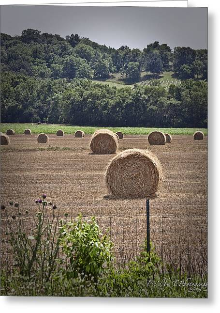 Tennessee Hay Bales Greeting Cards - Hay Day Greeting Card by Pic