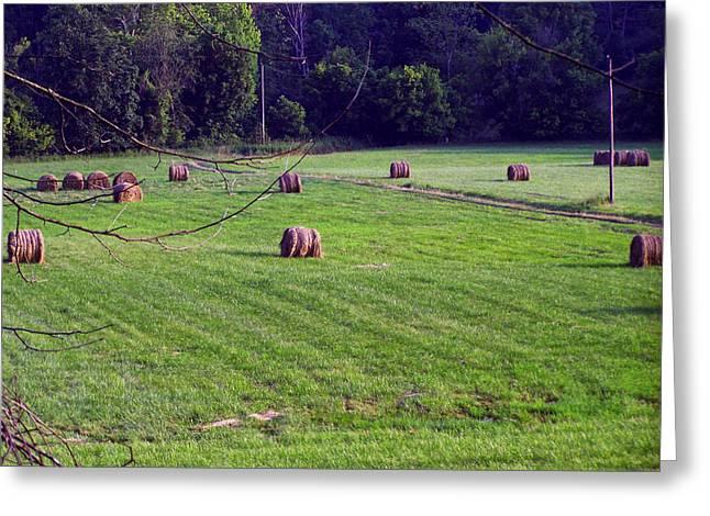 Landscape Posters Digital Greeting Cards - Hay field Greeting Card by Chris Flees