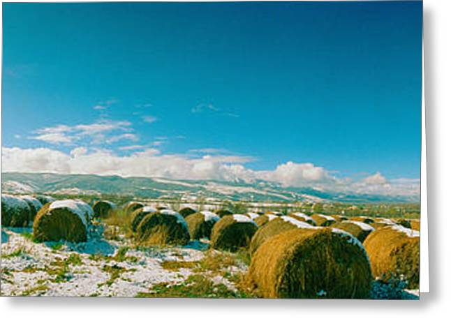 Hay Bales Greeting Cards - Hay Field In Snow, Andorra Greeting Card by Panoramic Images