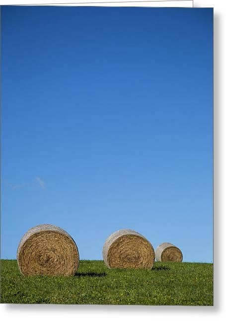The Big Three Greeting Cards - Hay For Three Greeting Card by Karol  Livote