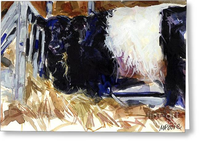 Belted Galloway Greeting Cards - Hay Hay Greeting Card by Molly Poole