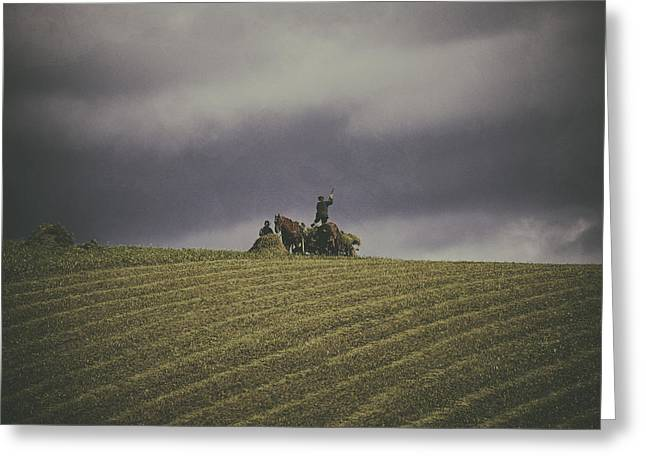 Harvest Time Greeting Cards - Hay making farmers Greeting Card by Attila Simon