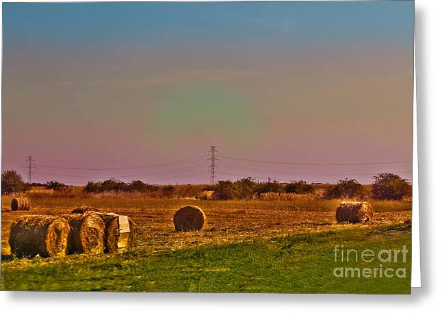 Wheat Field Sky Pictures Greeting Cards - Hay rolls Greeting Card by Claudia Mottram
