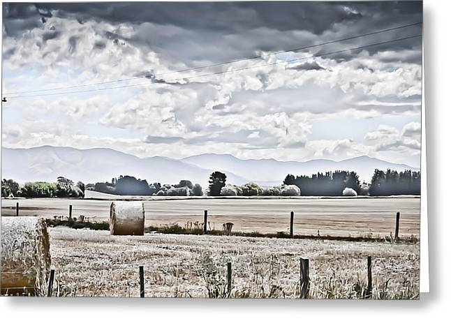 Haybales Digital Art Greeting Cards - Haybales fields trees and clouds Greeting Card by Shivonne Ross
