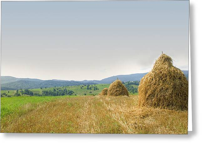 Panorama Greeting Cards - Hayrack panorama Greeting Card by Vlad Baciu