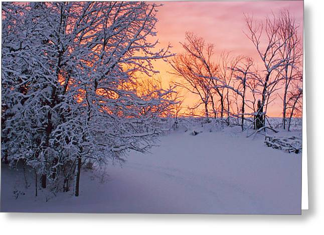 Snow Scene Landscape Greeting Cards - Hayrake and Trees - Winter Sunset #2 Greeting Card by Nikolyn McDonald