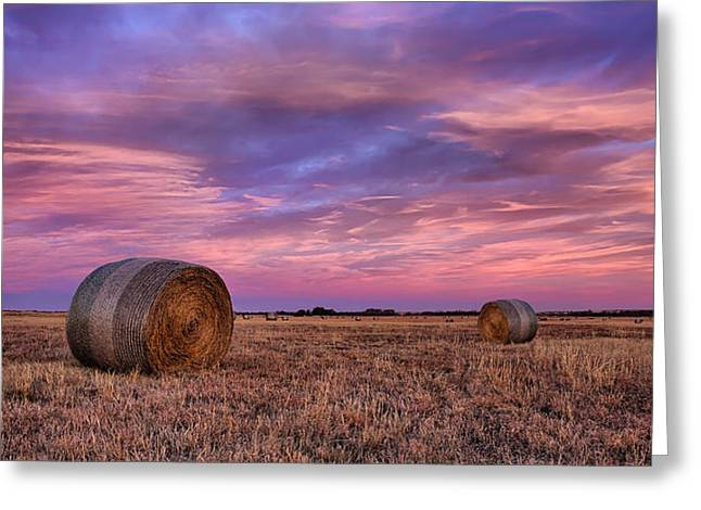Oklahoma Greeting Cards - Hayseed Greeting Card by Thomas Zimmerman