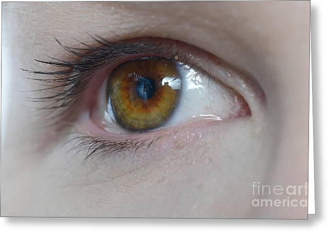 20-30 Greeting Cards - Hazel Eye Greeting Card by Photo Researchers, Inc.