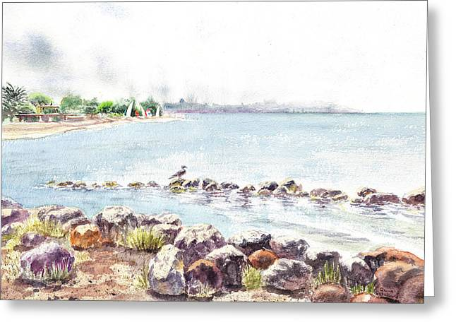 Bay Area Greeting Cards - Hazy Morning at Crab Cove in Alameda California Greeting Card by Irina Sztukowski