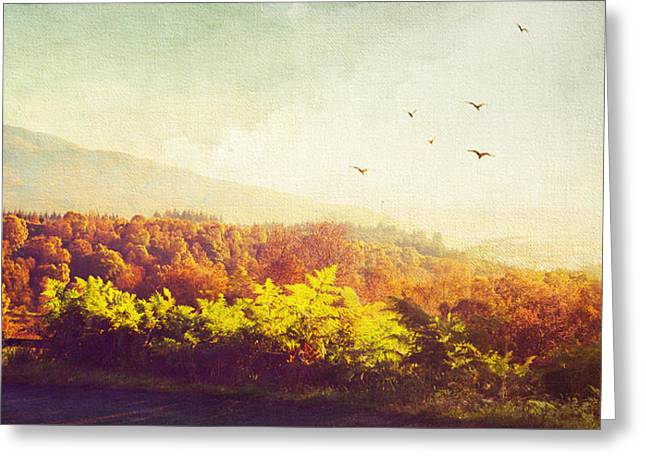 Landscape Photograpy Greeting Cards - Hazy Morning in Trossachs National Park. Scotland Greeting Card by Jenny Rainbow