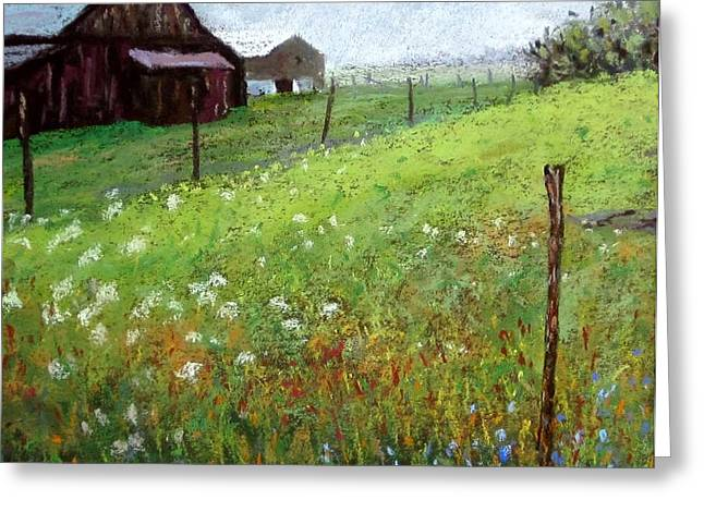Amish Farms Pastels Greeting Cards - Hazy Summer Field with Fence Line Greeting Card by Bob Richey
