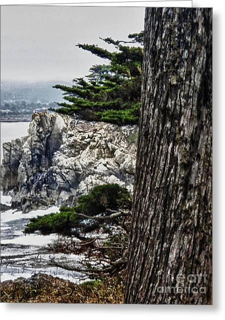 Point Lobos State Greeting Cards - hd 428 Point Lobos 2 Greeting Card by Chris Berry