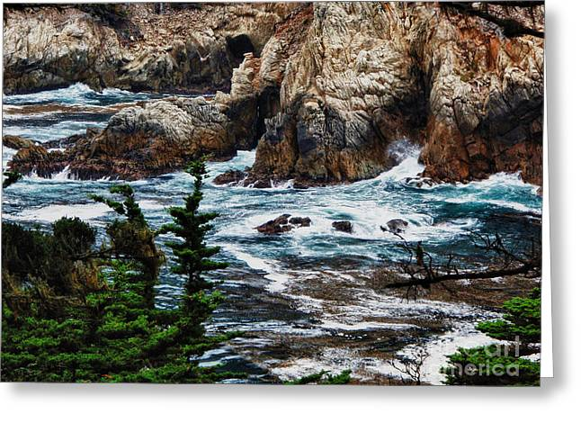Point Lobos State Greeting Cards - hd 429 The Toe 3 Greeting Card by Chris Berry