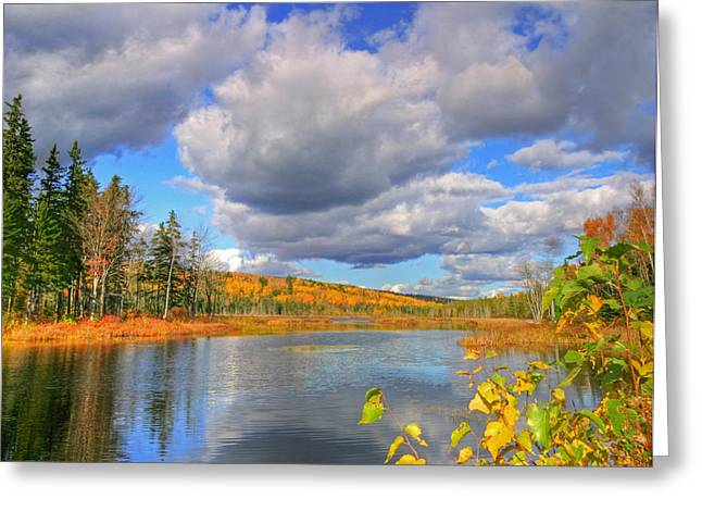 Mud Season Greeting Cards - HDR Mud Lake Autumn Colors Sky Reflection Greeting Card by Jamie Roach