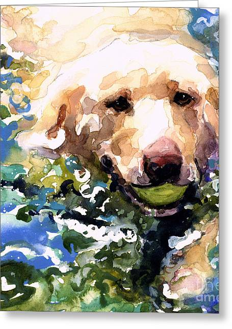Labrador Greeting Cards - Head Above Water Greeting Card by Molly Poole