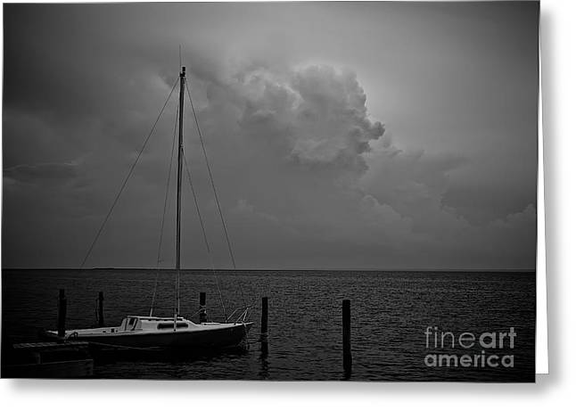 Lbi Greeting Cards - Head in the Clouds in black and white Greeting Card by Mark Miller
