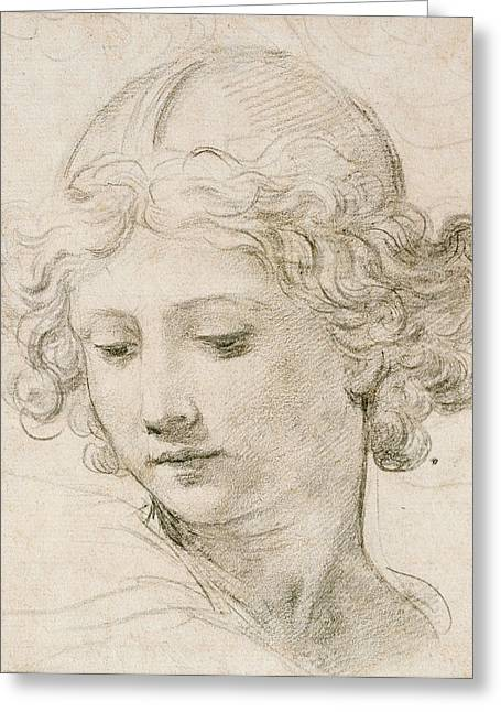 Young Lady Greeting Cards - Head of an Angel Greeting Card by Pietro da Cortona