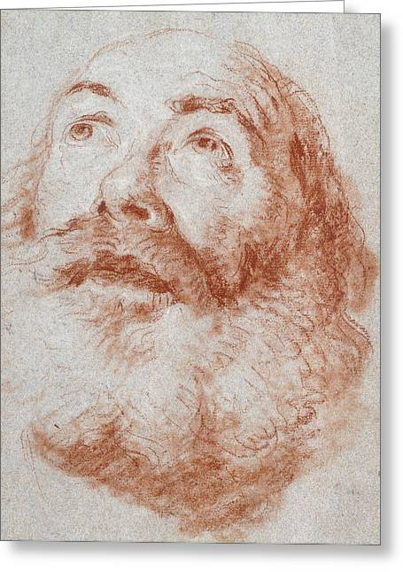 White Beard Pastels Greeting Cards - Head of an Old Man looking up Greeting Card by Giovanni Battista Tiepolo