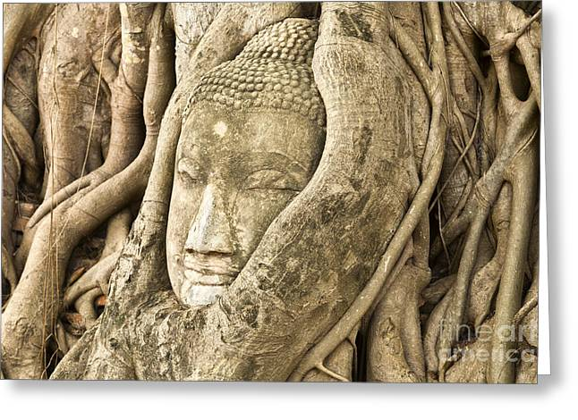 Head of Buddha Ayutthaya Thailand Greeting Card by Colin and Linda McKie