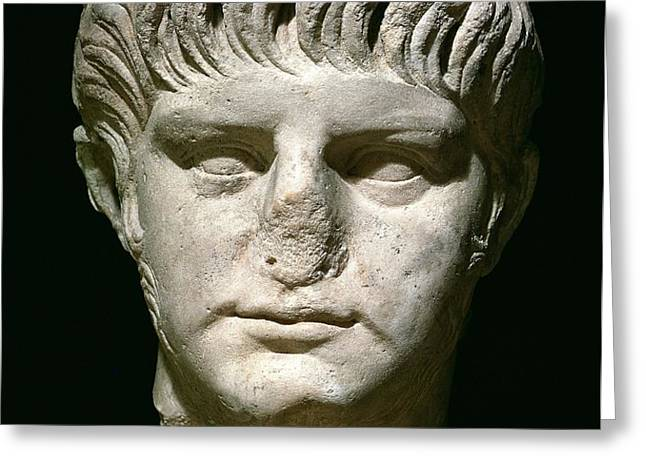 Head of Nero Greeting Card by Anonymous
